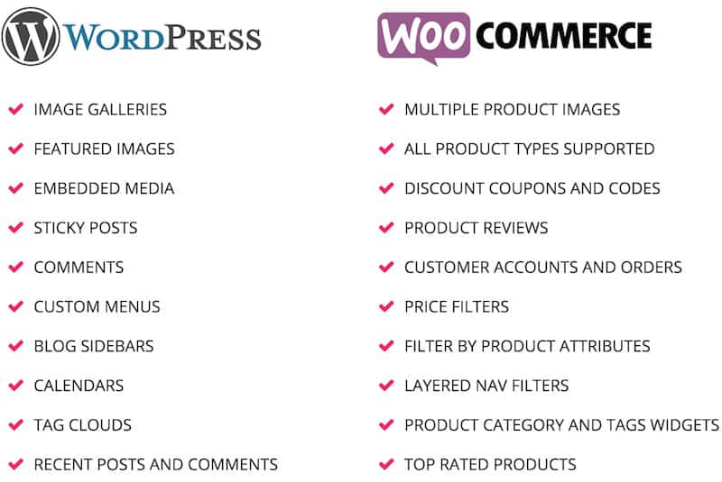 ciri-ciri wordpress-and-woocommerce