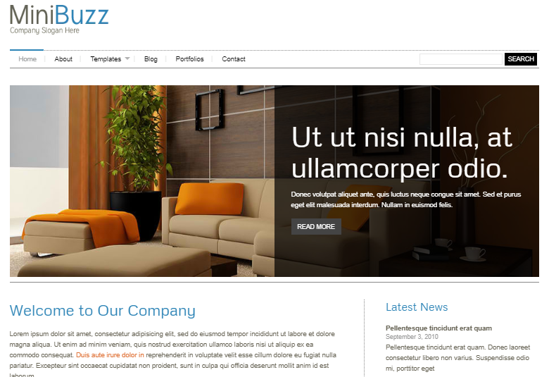 Tema WordPress minimalista MiniBuzz