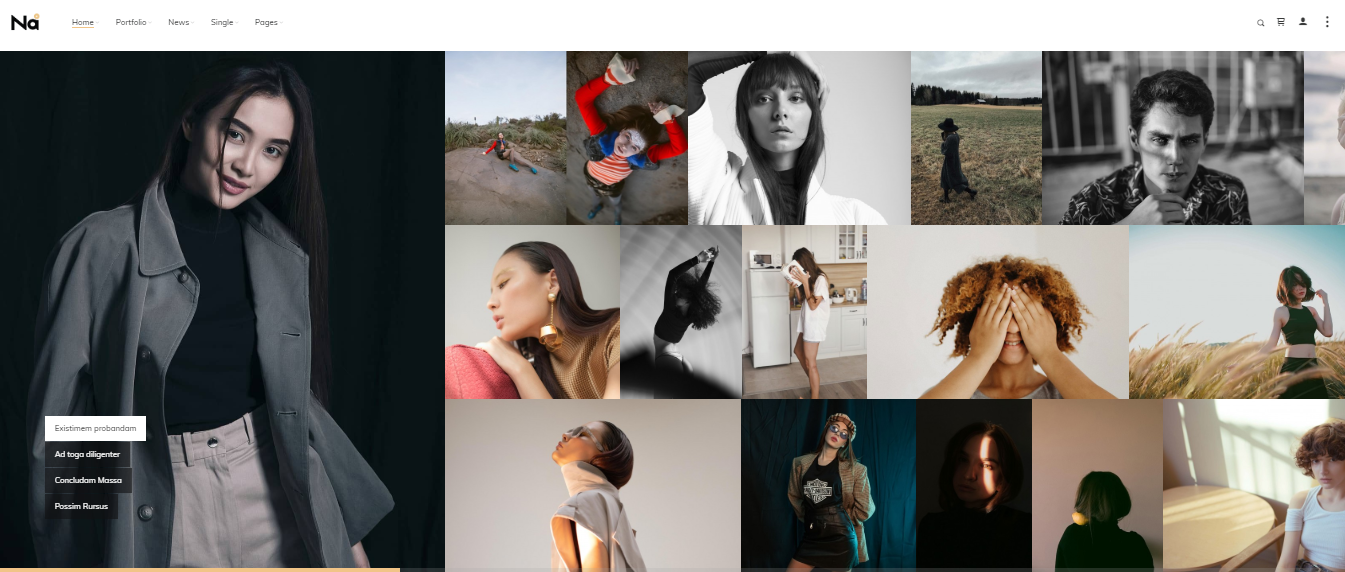 TheNa Photo WordPress tema